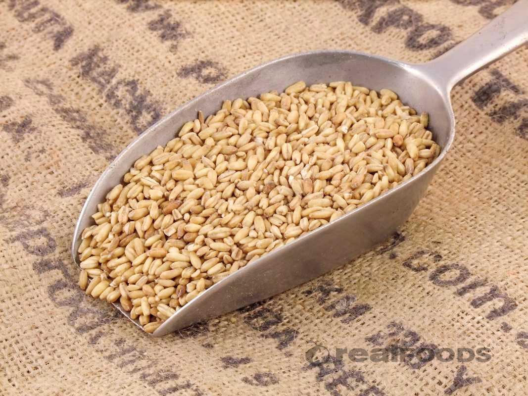 Krachttraining ontbijt? Start met complexe koolhydraten en een bron van eiwitten 20